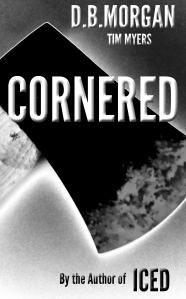 CORNEREDSizedBNwtim1212trial2