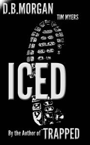 ICEDSizedBNwtim1212trial2